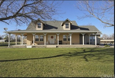Orland Single Family Home For Sale: 6070 County Road 7