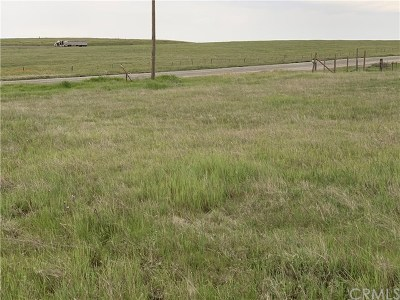Residential Lots & Land For Sale: County Road 99w Hwy
