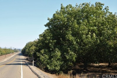 Chico Residential Lots & Land For Sale: 3955 W Sacramento Avenue