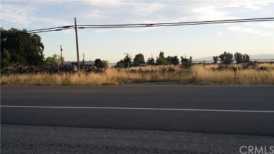Red Bluff Residential Lots & Land For Sale: 11455 State Highway 99w