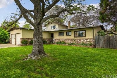 Chico Single Family Home For Sale: 1562 Filbert Avenue