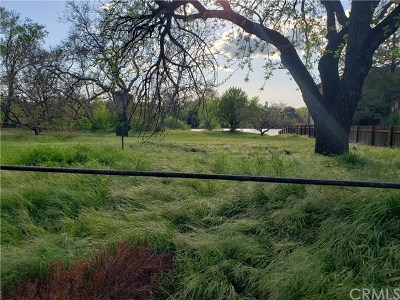 Red Bluff Residential Lots & Land For Sale: 1011 Lakeside Drive