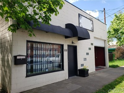 Chico Commercial For Sale: 828 Salem Street
