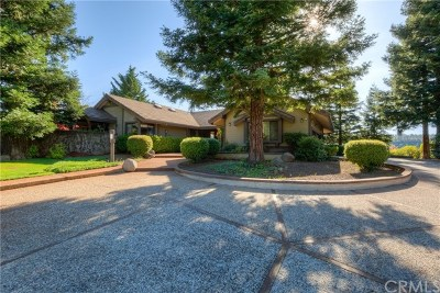 Forest Ranch Single Family Home For Sale: 14846 Eagle Ridge Drive