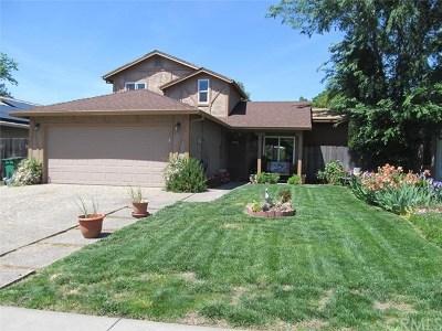 Chico Single Family Home For Sale: 1506 E Lassen Avenue