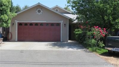 Oroville Single Family Home For Sale: 3379 Burlington Avenue