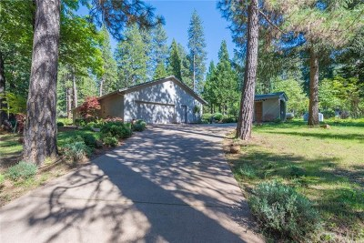 Forest Ranch Single Family Home For Sale: 4911 Contentment Lane