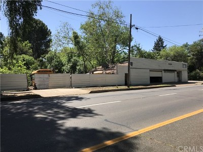 Chico Commercial For Sale: 431 W 9th Street