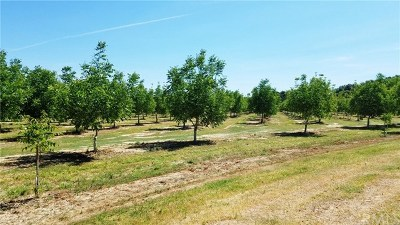 Red Bluff Residential Lots & Land For Sale: 12365 Willard Road