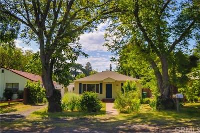 Chico Single Family Home For Sale: 385 E 10th Avenue