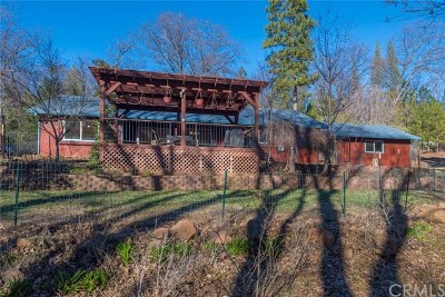 Forest Ranch Single Family Home For Sale: 4940 Papya Road