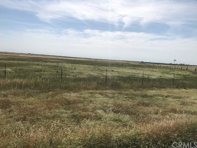 Chico Residential Lots & Land For Sale: Hwy 99 Highway