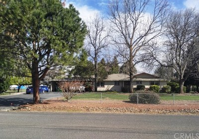 Chico Single Family Home For Sale: 4312 Caballo Way
