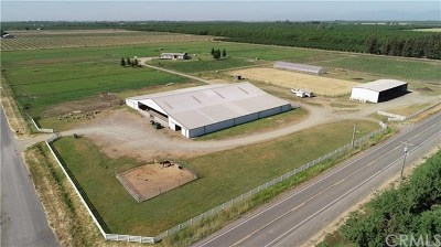 Commercial For Sale: 8075 County Road 29