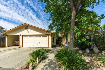 Chico Single Family Home For Sale: 536 Larch Street