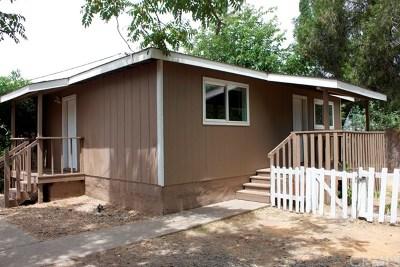 Oroville Single Family Home For Sale: 765 Gardella Avenue
