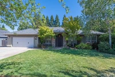 Chico Single Family Home For Sale: 1499 Kona Drive