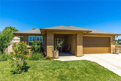 Chico Single Family Home For Sale: 3400 Bamboo Orchard Drive