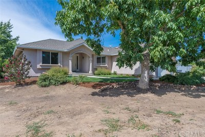 Chico Single Family Home For Sale: 7480 Cana Highway