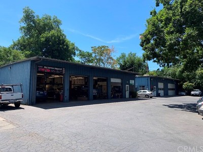 Chico Commercial For Sale: 1367 E 9th Street