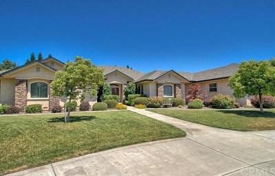 Chico Single Family Home For Sale: 163 McFadden Lane