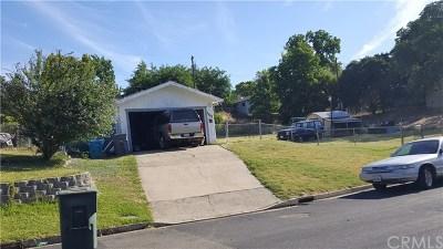 Oroville Single Family Home For Sale: 3648 Argonaut Avenue