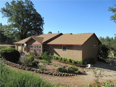 Chico Single Family Home For Sale: 9620 Cohasset Road