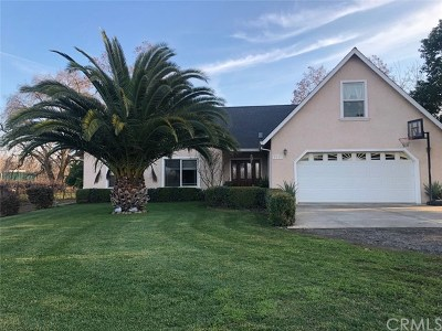 Chico Single Family Home For Sale: 6435 Cana