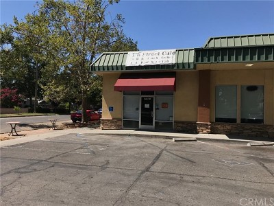 Butte County Business Opportunity For Sale: 1414 Park Avenue
