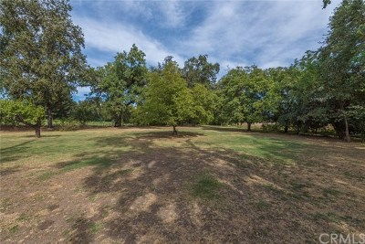Durham Single Family Home For Sale: 1680 Oro Chico Hwy