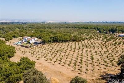 Chico CA Multi Family Home For Sale: $545,000