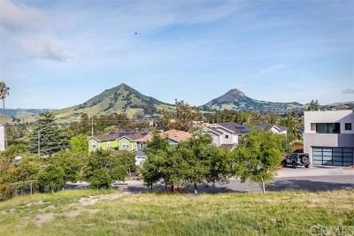 San Luis Obispo Residential Lots & Land For Sale: 2082 Fixlini Street