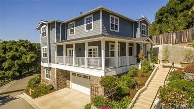 Arroyo Grande Single Family Home For Sale: 552 Paseo Street
