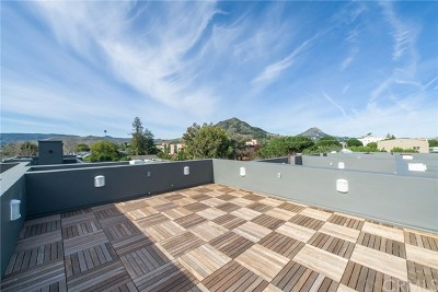 San Luis Obispo County Condo/Townhouse For Sale: 1321 Osos Street #250