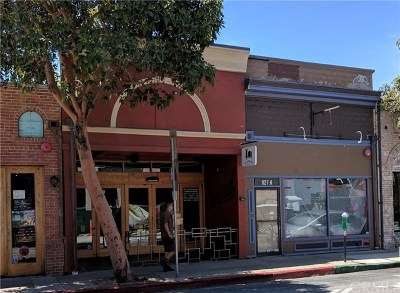 San Luis Obispo Commercial For Sale: 1127 Broad Street