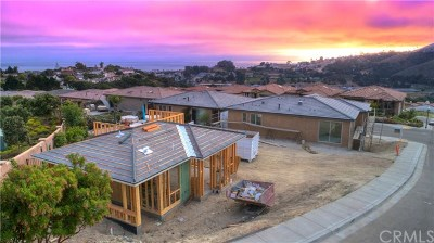 Pismo Beach Single Family Home For Sale: 229 Cima De Colina