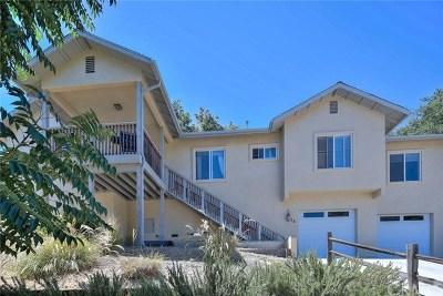 Paso Robles Single Family Home For Sale: 28 Fresno Street