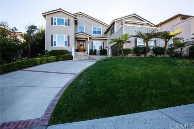 San Luis Obispo CA Single Family Home For Sale: $1,495,000