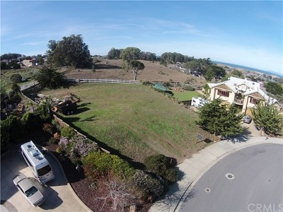 Cambria, Cayucos, Morro Bay, Los Osos Residential Lots & Land For Sale: 289 Highland Dr