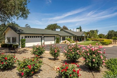 Paso Robles CA Single Family Home For Sale: $1,649,000