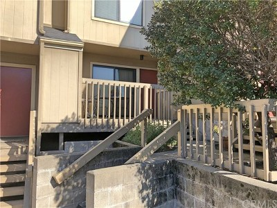 San Luis Obispo Condo/Townhouse For Sale: 750 Chorro Street #14