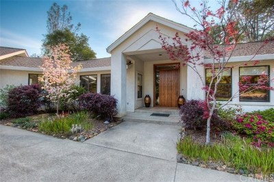 Oroville Single Family Home For Sale: 641 Circle Drive