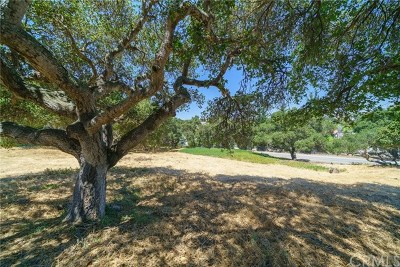 Pismo Beach, Arroyo Grande, Grover Beach, Oceano Residential Lots & Land For Sale: El Camino Real