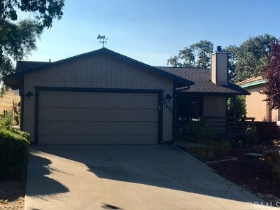 Paso Robles Single Family Home For Sale: 4690 Silver Saddle Lane