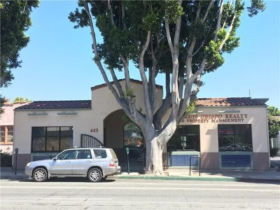 San Luis Obispo Commercial For Sale: 443 Marsh Street