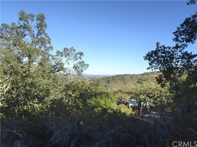 San Luis Obispo County Residential Lots & Land For Sale: 10945 Vista Road