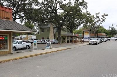 San Luis Obispo County Commercial For Sale: 105 S Main Street
