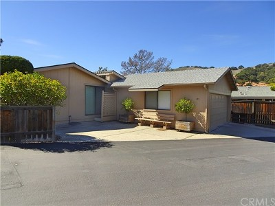 Avila Beach Single Family Home For Sale: 171 Village Crest #171