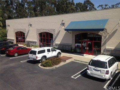 San Luis Obispo County Commercial Lease For Lease: 3050 Broad Street