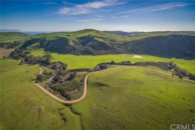 Cambria, Cayucos, Morro Bay, Los Osos Residential Lots & Land For Sale: 3750 Villa Creek Road